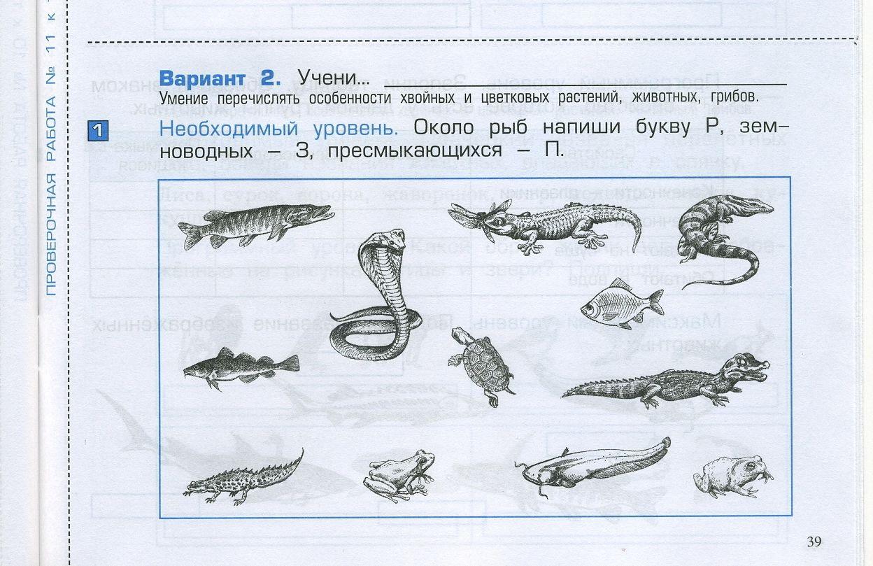 Гдз по русскому языку 3класс Пронина